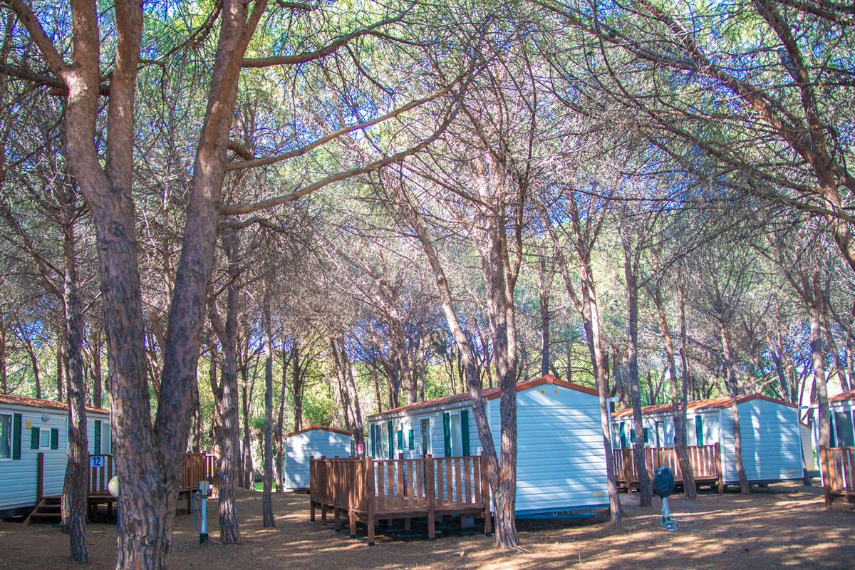 camping-iscrixedda-lotzorai-sardegna-mobile-home15