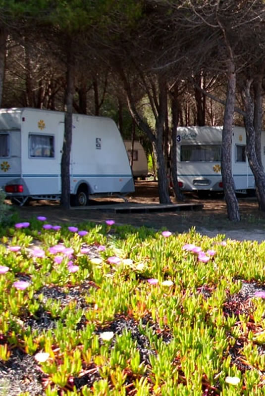 camping-iscrixedda-lotzorai-sardegna-roulotte2